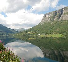 The Sognefjord by julie08