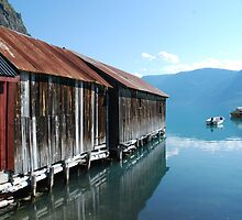The Sognefjord II by julie08