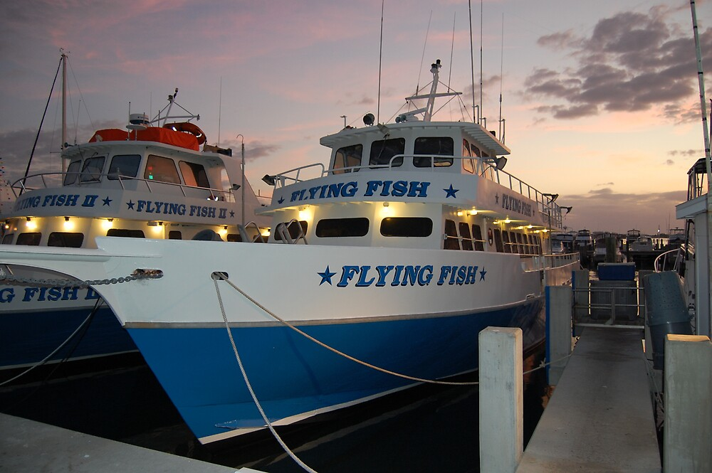 Flying Fish At The Dock by dave1276