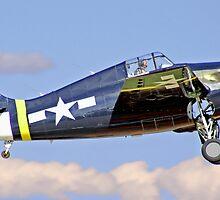 F-4F Wildcat by john403