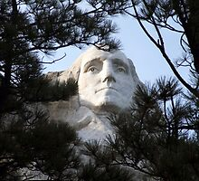 A Founding Father by PhotosbyTerrell