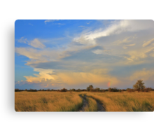Two Track Road to Rainbow Bliss Canvas Print