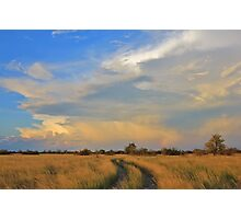Two Track Road to Rainbow Bliss Photographic Print