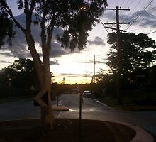 Sunset over the Suburbs by Alison Pearce