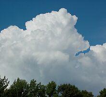 big cloud by Roslyn Lunetta