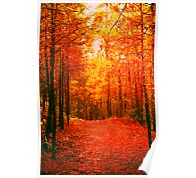 Red and Orange Autumn II Poster
