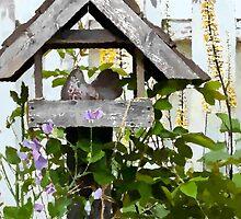 Shelter - Garden Scene  by Sandra Foster