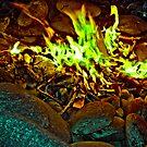 Toxic Flames by Ryan Piercey