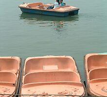 Kunming Lake by ozecard
