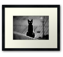 place in the sun for a black cat Framed Print