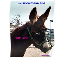 Cute Ass! BLM burros totally rule! Poster