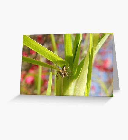 """""""Spike"""" Greeting Card"""