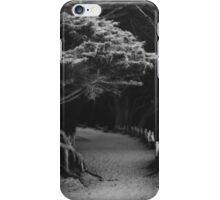 Pfeiffer Beach trail iPhone Case/Skin