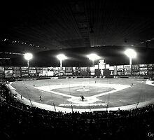 Tomateros Stadium   by loyaltyphoto