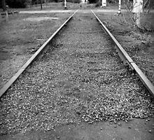 dormant tracks.. by partyofive