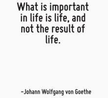 What is important in life is life, and not the result of life. by Quotr