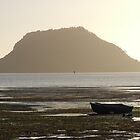 Mt Maunganui  by Mark  Wilson