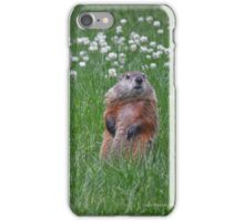 Marmota Monax - Groundhog | Center Moriches, New York  iPhone Case/Skin