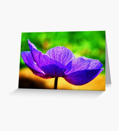 Simple Summer Beauty Greeting Card