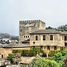 Alhambra Palace, Granada, Andalucia, Spain.  by Squealia