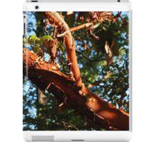 Arbatus Tree British Columbia iPad Case/Skin