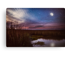 Goodnight, Louisiana Canvas Print