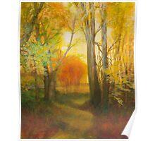 Autumn Aspens Grove Poster