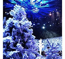 Christmas in Arrendale Photographic Print