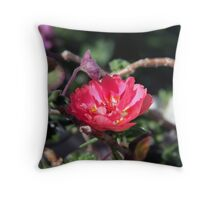 Pink Begonia Throw Pillow