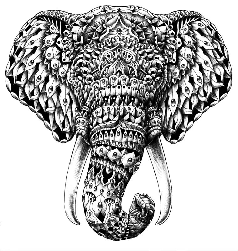 """Ornate Elephant Head"" Posters by BioWorkZ Redbubble"