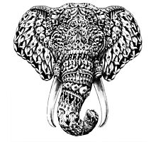 Ornate Elephant Head Photographic Print