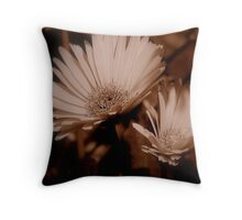 Softness Of Two Throw Pillow