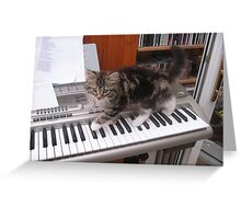 65 - MITCH THE PIANIST (D.E. 2008) Greeting Card