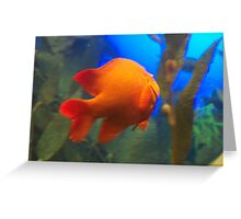 Orange fish against vibrant waterscape Greeting Card