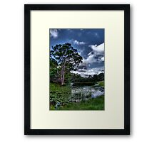 Down By The Pond Framed Print