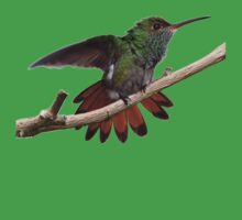 Rufous-tailed Hummingbird tee/case/mug/cushion/duvet cover/leggings by hummingbirds