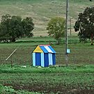 A Pump Shed? by GailD