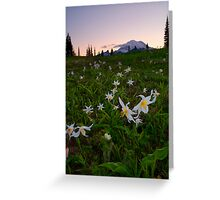 Avalanche of Lillies Greeting Card