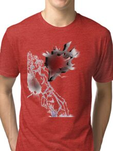 Willow Wings Angel Tri-blend T-Shirt