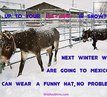 Cold Ass and haf-ass. by wildassshirts
