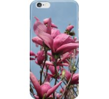 Magnolia Tree iPhone Case/Skin