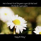A Daisy Birthday Sentiment by Brenda Anderson