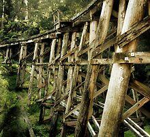 Trestle Bridge by Samantha Cole-Surjan