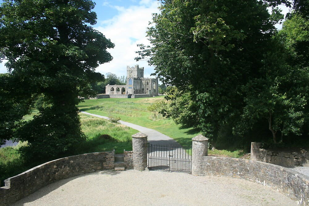Tintern Abbey view 2 by John Quinn