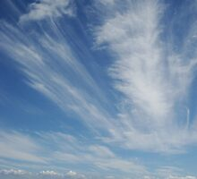 Wispy Clouds by Of Land & Ocean - Samantha Goode