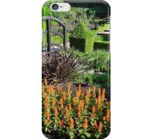 Winery Garden 5 iPhone Case/Skin