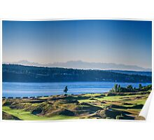Chambers Bay Tree Poster