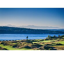 Chambers Bay Tree Photographic Print