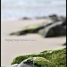 washed ashore by Nadja L.L. Farghaly