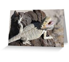 Young Bearded Dragon Greeting Card